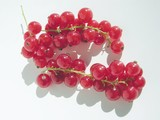 red currants cluster fruits poster