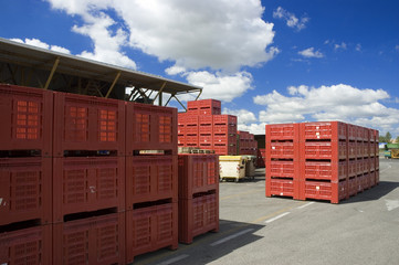 Large red bins ready to be shipped at the market