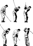 The Golf Swing - Vector
