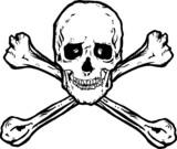 Skull and Crossbones Vector poster