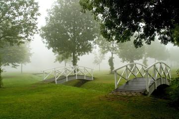 Footbridges in a misty parc