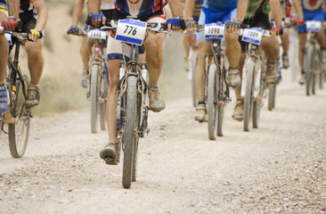 Mountain bikes en una competición.