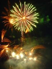 feu d'artifice le palmier