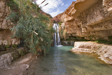 A falls and the river in reserve on the Dead Sea