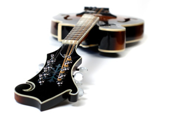 Close up of a mandolin on a white background.