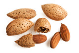 Close up view of the almond isolated on white.. poster