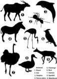 Nine detailed vector silhouettes of wildlife species poster