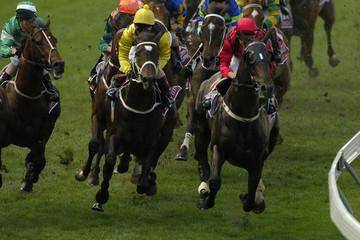 Horseracing 024