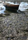 Bateau à marée basse poster