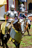 Knight at renaissance fair poster