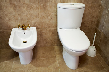 Toilet bowl and bidet in a toilet