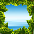 Blue sky and tropical sea in a fresh leaves