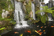Koi fish pond with waterfalls in a Chinese Buddhist temple
