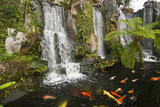 Fototapety Koi fish pond with waterfalls in a Chinese Buddhist temple