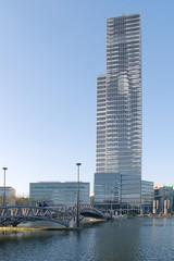 Cologne VIII