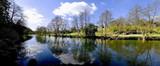 river teme ludlow shropshire england midlands uk poster