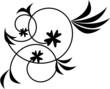 Spirales fleurs