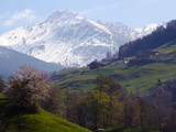 Landscape in the southern Alps in spring. poster