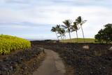 Volcanic Lava Coast of Kona Island, Hawaii poster