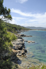 Vertical panorama Sardinia coast