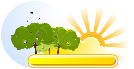 Nature label - Summer