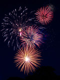 Cluster of gold, pink, red, blue, white fireworks poster