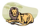 Lion in the safari poster