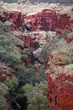 Blick in die Red Gorge Australien_07_1723 poster