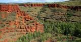 Blick in die Dales Gorge Australien_07_1756,01 poster