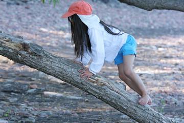 Climbing up a tree limb