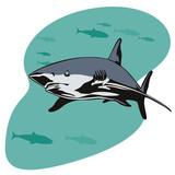 Shark prowling the deep poster