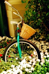 Garden Decor with Cycle