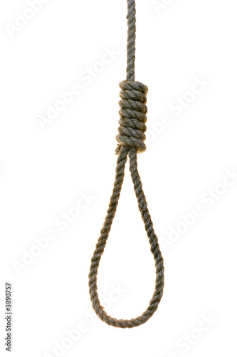 noose over the white background