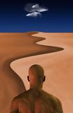 Desert Journey poster
