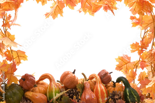 Pumpkins and gourds on isolated on white background