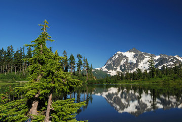 mt. shuksan and reflection on picture lake
