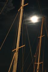 Moonlit Mast