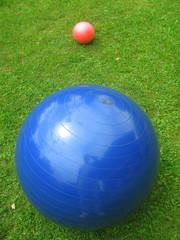 balls in garden