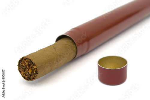Cigar in box, close-up, isolated on white background