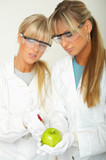 Female scientists injecting liquid into a apple poster