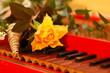 Clavichord mit Blume