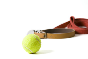 Dog collar with leash and a tennis ball on white background