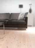 grey sofa with pillow poster