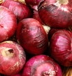 Pile of Fresh Red Organic Onions at Market