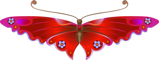 Stylised Butterfly