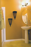Modern bathroom with white sink poster