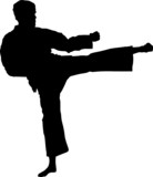 Sport silhouette - Martial arts poster