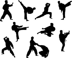 Sport silhouette - Martial arts