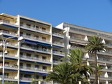 Immeubles de vacances et palmiers poster