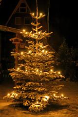Winter, Schnee, Weihnachten